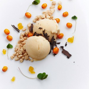 09_gronsaks_dessert_havtorn_12791