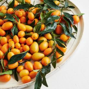 07_Kumquat_frucht_1180