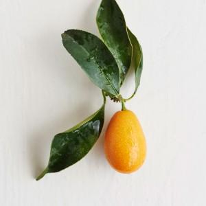 09_Kumquat_frucht_1186