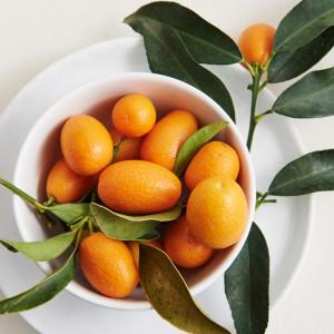10_Kumquat_frucht_1958