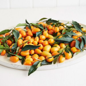 25_Kumquat_frucht_1167