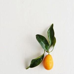 27_Kumquat_frucht_1190