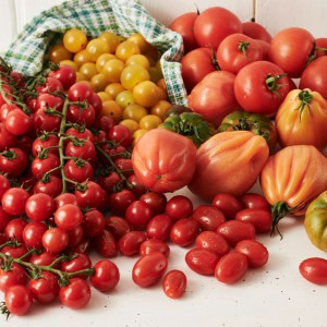 01_Tomate_frucht_2045