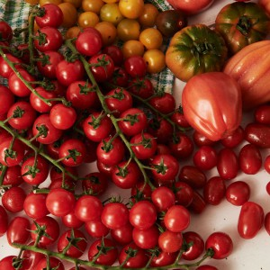 16_Tomate_frucht_2048
