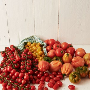 20_Tomate_frucht_2058