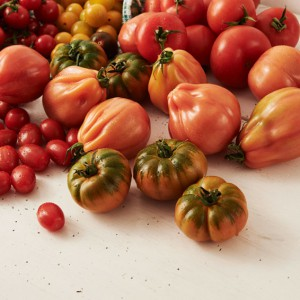 21_Tomate_frucht_2064