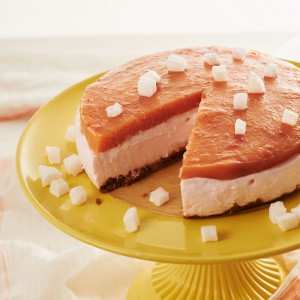 05_04_Aprikose_cheesecake_3958