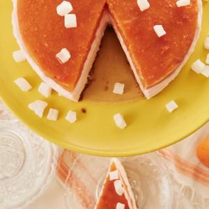 06_05_Aprikose_cheesecake_3975