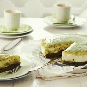 21_H_Gruen_Torte_4681