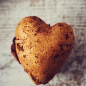 23_Kartoffel_Mood_221078