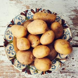 32_Kartoffel_Mood_221144