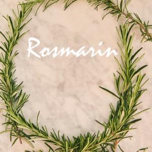 44_Rosmarin_Mood-_8824