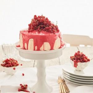 46_Marmeladen_Kuchen_Torte_9526