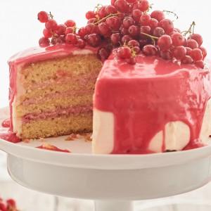53_Marmeladen_Kuchen_Torte_9557