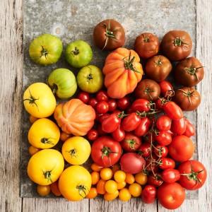 Tomato_Mood_270538
