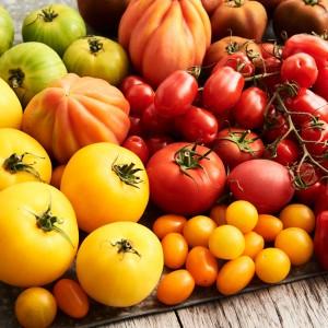 Tomato_Mood_270545