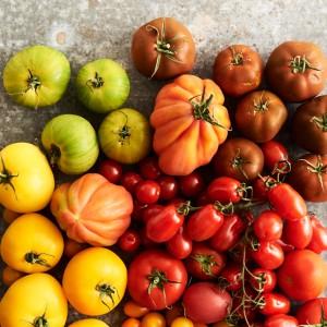 Tomato_Mood_270564