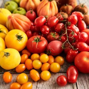Tomato_Mood_270594