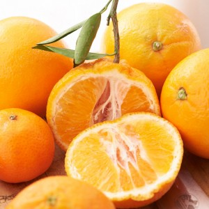 14_Oranges_Mood_309606