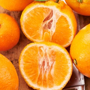 17_Oranges_Mood_309622