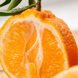 20_Oranges_Mood_309634