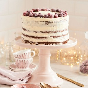 02_02_Craneberry_suess_Torte_28788