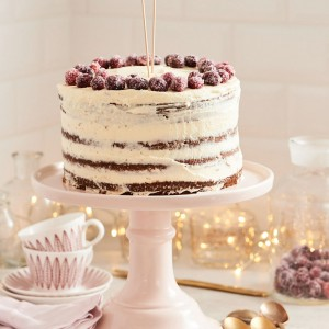 03_03_Craneberry_suess_Torte_28798