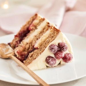 06_06_Craneberry_suess_Torte_28822